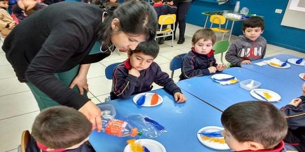 DIARIO EL MAULE: Programa apoya a educadoras de párvulos en la enseñanza de ciencias
